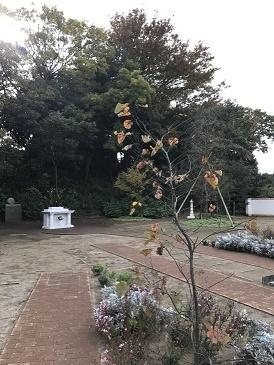 秋のおとずれ_b0308135_09174279.jpg