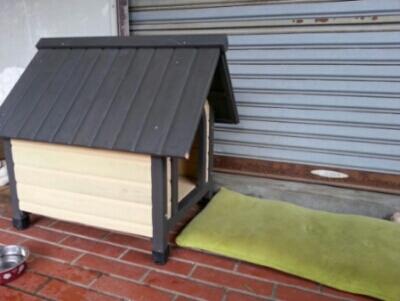 リオ(犬)の5軒目のお家_c0330749_09352965.jpg