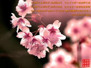 e0360589_12073252.jpg