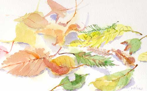 秋から冬に 6_d0115092_18153770.jpg