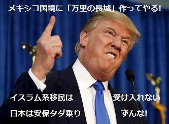 トランプ次期大統領をどう見る_d0136506_21401715.jpg