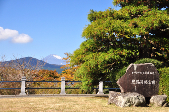 2016 秋の箱根旅行 その③ 11/5編_f0329311_08391924.jpg