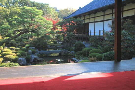 紅葉探訪11 等持院と仁和寺_e0048413_19201163.jpg