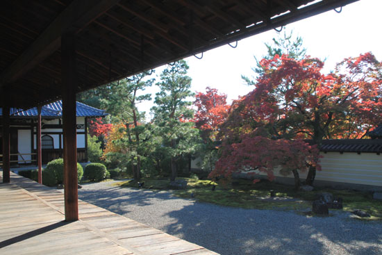 紅葉探訪11 等持院と仁和寺_e0048413_1920162.jpg