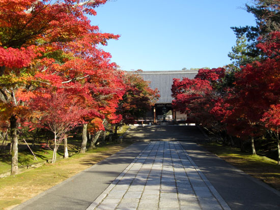 紅葉探訪11 等持院と仁和寺_e0048413_19213280.jpg