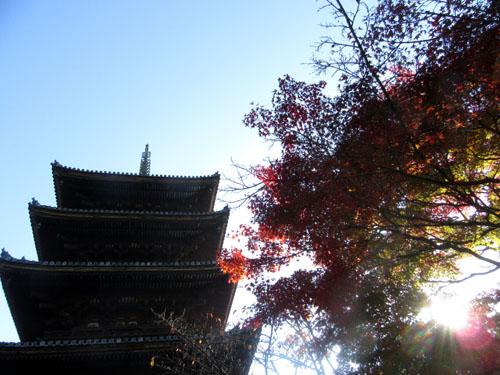 紅葉探訪11 等持院と仁和寺_e0048413_19215549.jpg