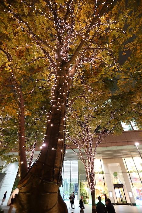 有楽町の夜景_f0084337_00292371.jpg