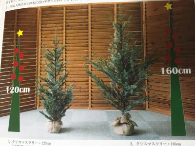 本物みたいな♡クリスマスツリー_c0207638_19360498.jpg