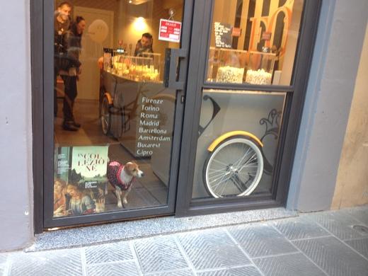 フィレンツェに今更感のある専門店がオープン_a0136671_4433595.jpg