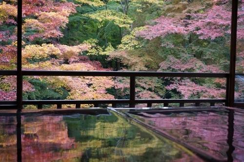 **日本の秋色** 瑠璃光院_c0207890_14120703.jpg