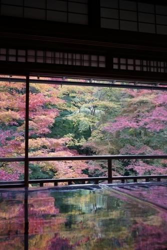 **日本の秋色** 瑠璃光院_c0207890_14121284.jpg