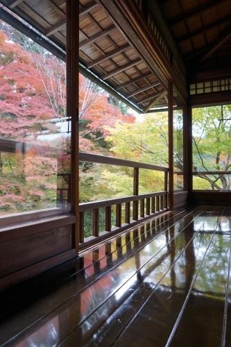 **日本の秋色** 瑠璃光院_c0207890_14121653.jpg