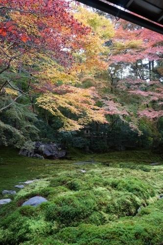 **日本の秋色** 瑠璃光院_c0207890_14122001.jpg