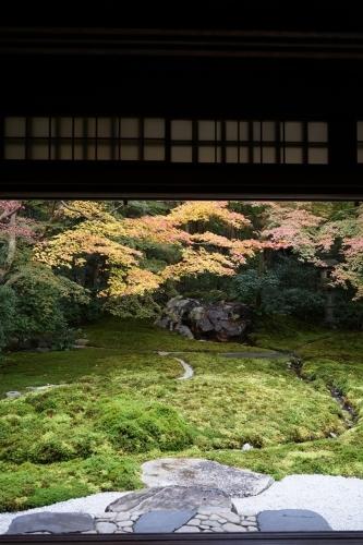 **日本の秋色** 瑠璃光院_c0207890_14122621.jpg