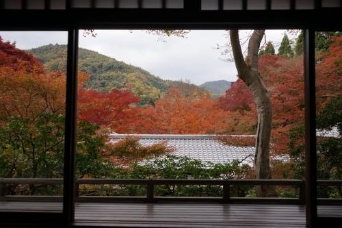 **日本の秋色** 瑠璃光院_c0207890_14123023.jpg