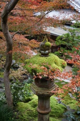 **日本の秋色** 瑠璃光院_c0207890_14125078.jpg