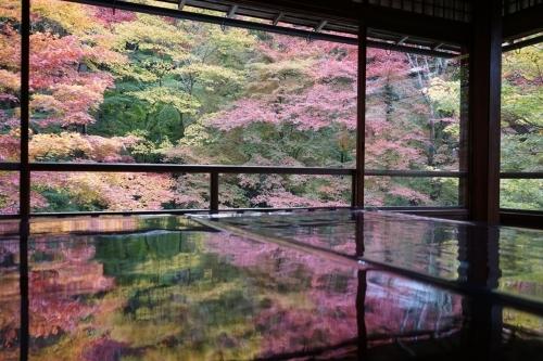 **日本の秋色** 瑠璃光院_c0207890_14162426.jpg