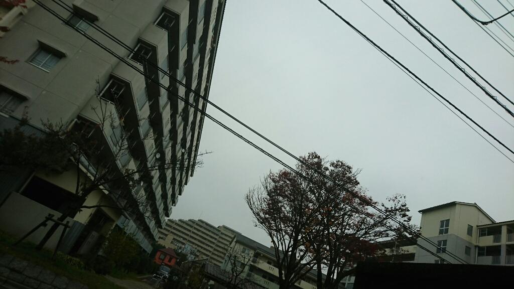 雨やんだ_b0089492_14504572.jpg