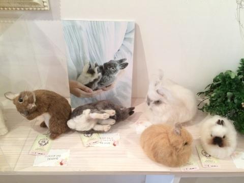 畑牧子さんの出版記念作品展『リアルかわいい羊毛フェルトのうさぎ』@南青山Gallery Paletteへ_a0157409_14493056.jpeg