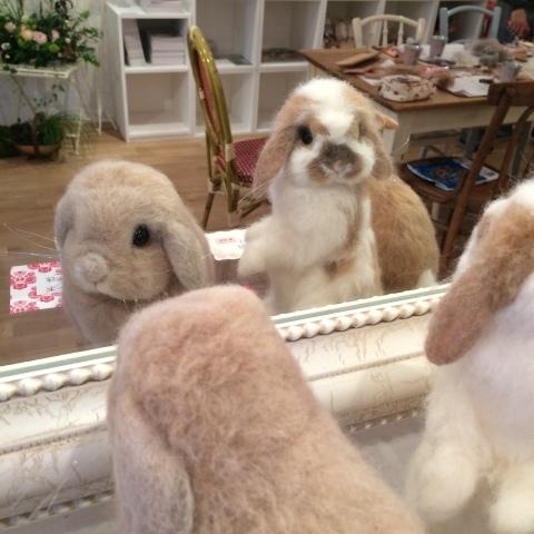 畑牧子さんの出版記念作品展『リアルかわいい羊毛フェルトのうさぎ』@南青山Gallery Paletteへ_a0157409_14494445.jpeg