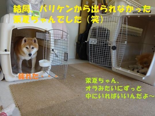 f0121712_02110376.jpg