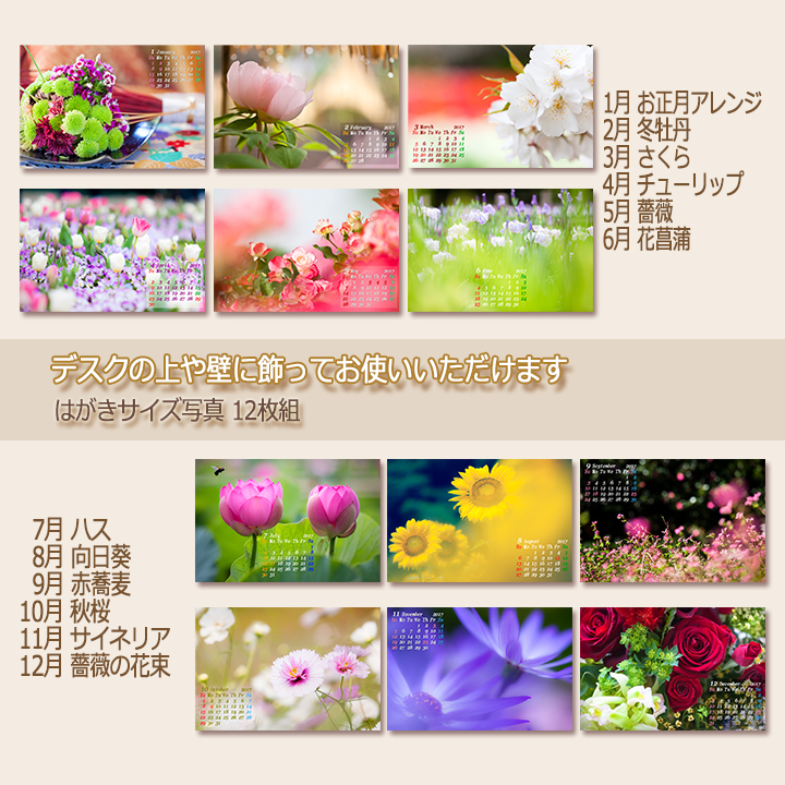 c0037519_01270111.jpg
