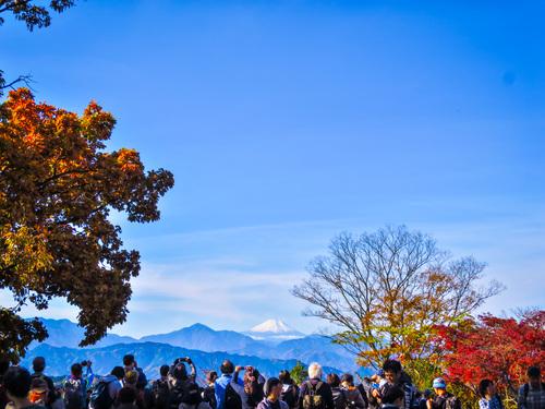 2016.11.20高尾山の紅葉_e0321032_15432158.jpg