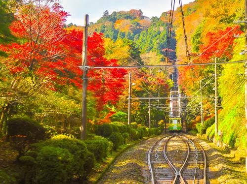 2016.11.20高尾山の紅葉_e0321032_15452991.jpg