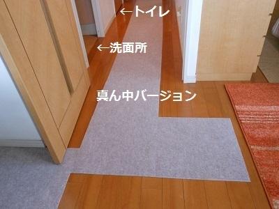c0261346_20083725.jpg