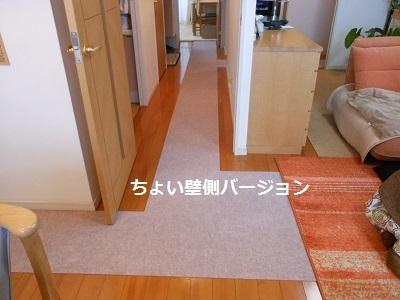 c0261346_20090630.jpg