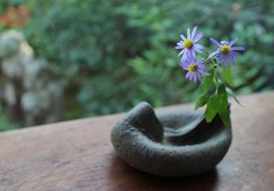 花だより ヘシャゲ土器とヨメナ_a0279848_17263503.jpg