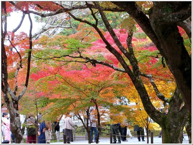 南禅寺かいわいを、ぶらりと散歩_b0104092_1729936.jpg