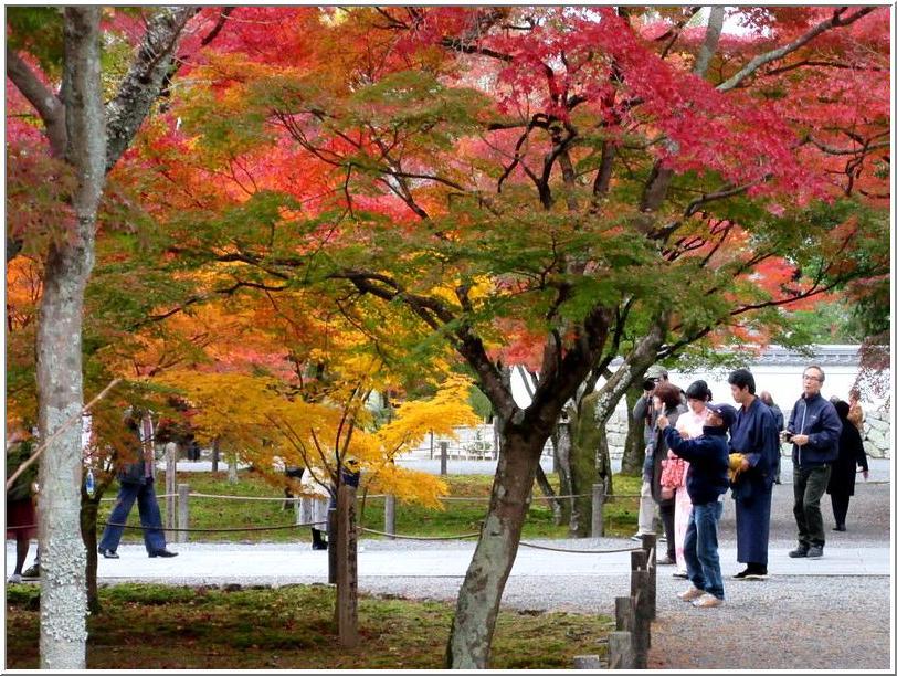 南禅寺かいわいを、ぶらりと散歩_b0104092_17312127.jpg