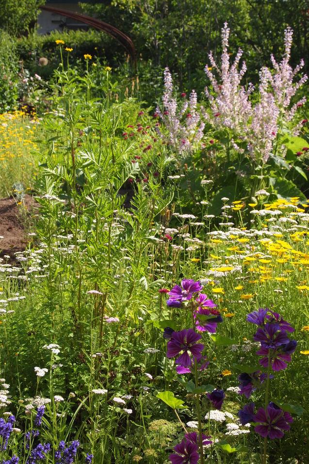 お庭の土づくりについて_a0292194_166228.jpg