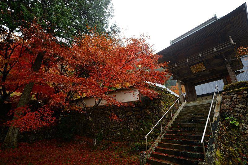 2016京都の紅葉@須知 玉雲寺_f0032011_18395574.jpg
