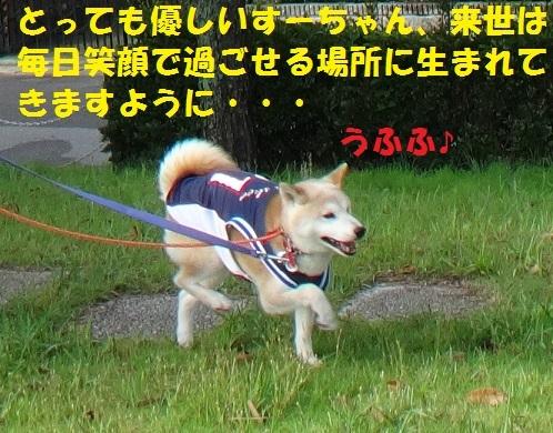 f0121712_10304461.jpg