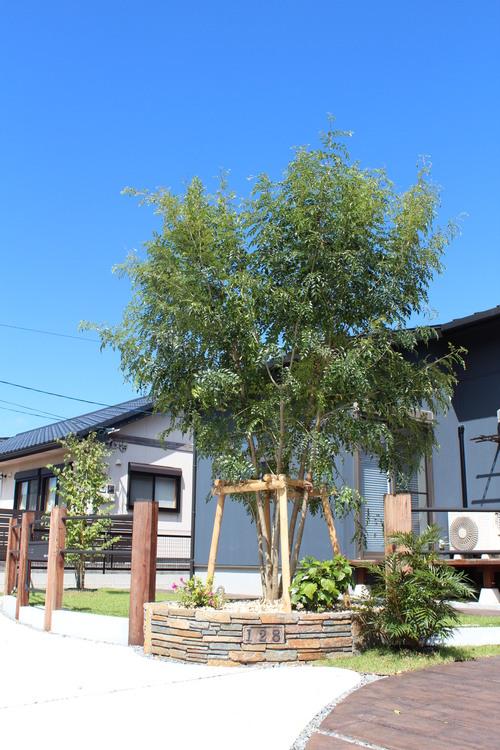宮崎市Y様邸NEW BUILDING_b0236217_11946100.jpg