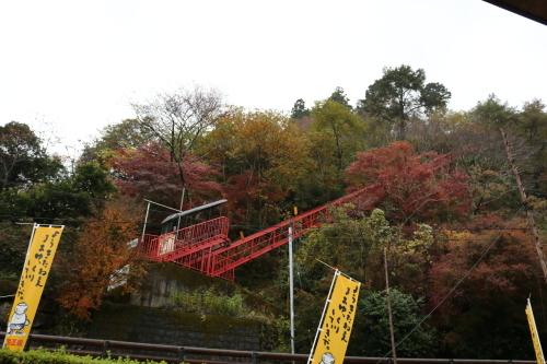 雨の馬路村_e0101917_16340400.jpg