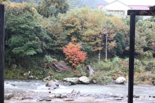 雨の馬路村_e0101917_16343418.jpg