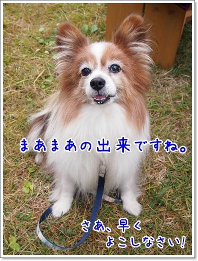 d0013149_00201514.jpg