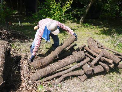 旬援隊のオリジナルブランド商品と、『原木しいたけ』の2年後の収穫へ向け伐採作業_a0254656_1450663.jpg