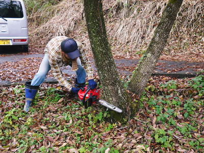 旬援隊のオリジナルブランド商品と、『原木しいたけ』の2年後の収穫へ向け伐採作業_a0254656_15564991.jpg
