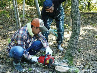 旬援隊のオリジナルブランド商品と、『原木しいたけ』の2年後の収穫へ向け伐採作業_a0254656_16301753.jpg