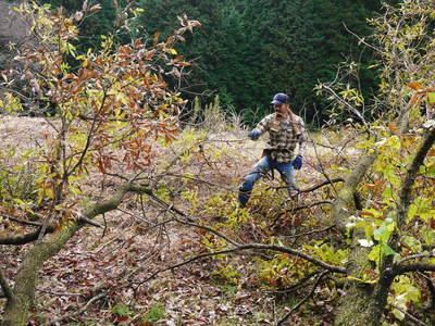旬援隊のオリジナルブランド商品と、『原木しいたけ』の2年後の収穫へ向け伐採作業_a0254656_1656499.jpg