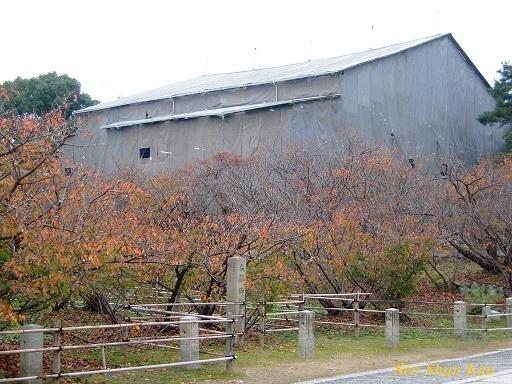 文化財建造物の保存修理 仁和寺観音堂 2016年11月6日_a0164068_15114406.jpg
