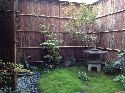 中庭の冬支度_f0348078_19462712.jpg