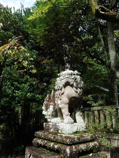 10/25 京都へ3_f0089079_07121284.jpg