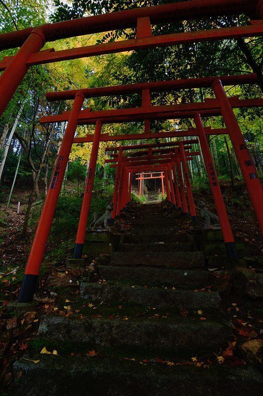 2016京都の紅葉@とある神社_f0032011_19461795.jpg