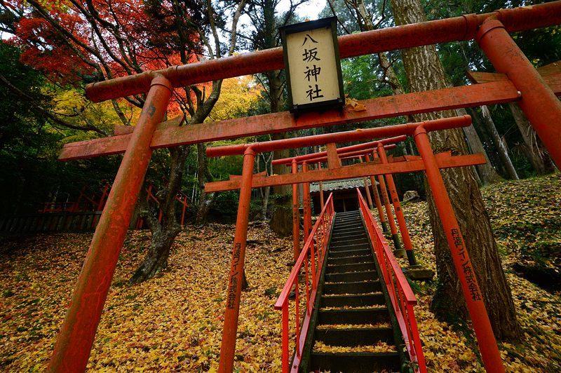 2016京都の紅葉@とある神社_f0032011_19461826.jpg