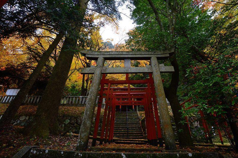 2016京都の紅葉@とある神社_f0032011_19461993.jpg